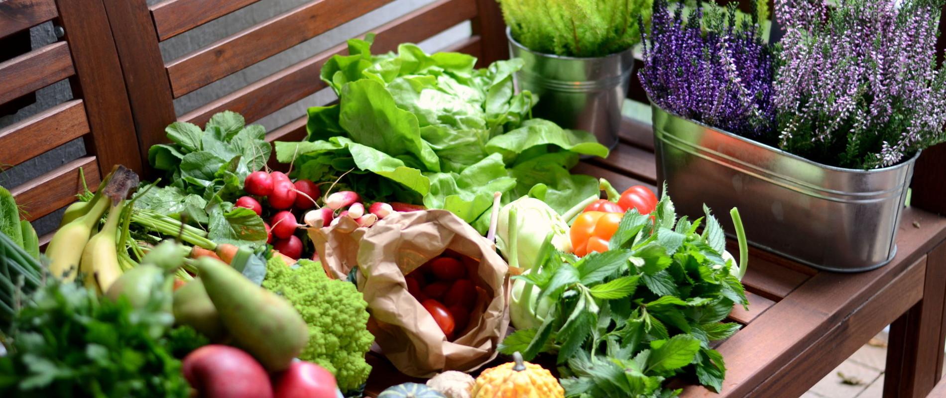 Ernährungsberatung und Ernährungstherapie